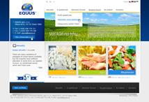 equus_web_design_prvni_small.jpg